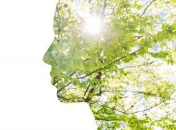 64663441 - beauty, nature, travel and ecology concept - portrait of woman profile with green tree foliage with double exposure effect